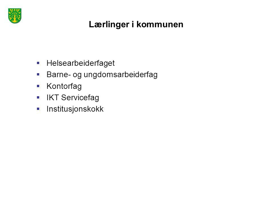 Lærlinger i kommunen  Helsearbeiderfaget  Barne- og ungdomsarbeiderfag  Kontorfag  IKT Servicefag  Institusjonskokk
