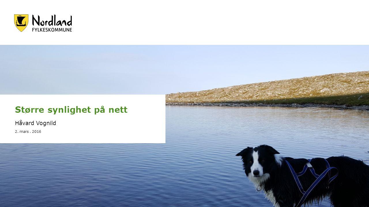Større synlighet på nett Håvard Vognild 2. mars. 2016