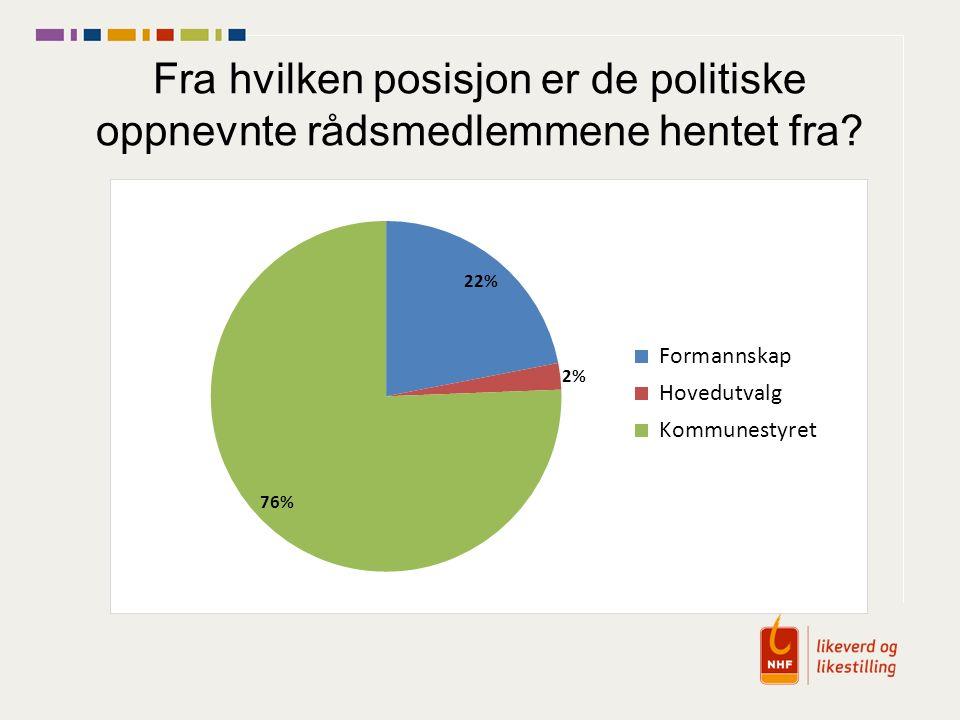 Fra hvilken posisjon er de politiske oppnevnte rådsmedlemmene hentet fra?