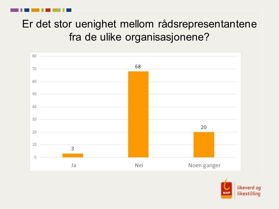 Er det stor uenighet mellom rådsrepresentantene fra de ulike organisasjonene?