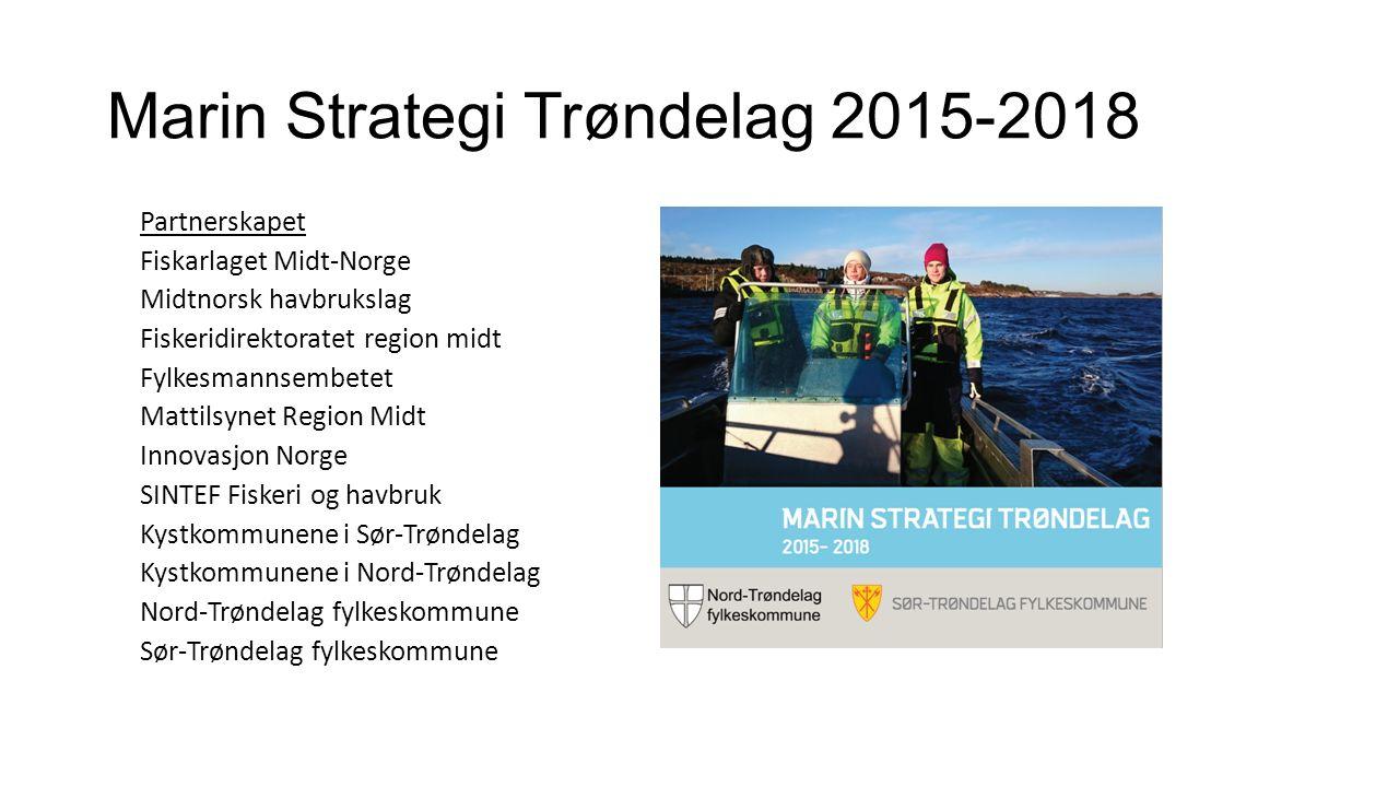 Marin Strategi Trøndelag 2015-2018 Partnerskapet Fiskarlaget Midt-Norge Midtnorsk havbrukslag Fiskeridirektoratet region midt Fylkesmannsembetet Matti