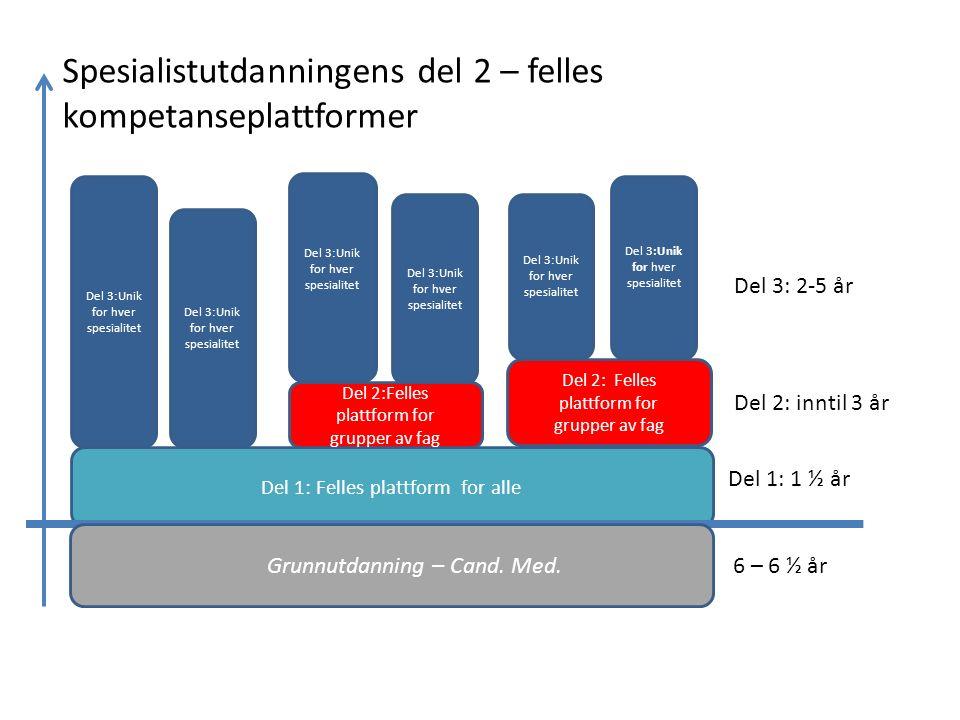 Del 1: Felles plattform for alle Grunnutdanning – Cand.