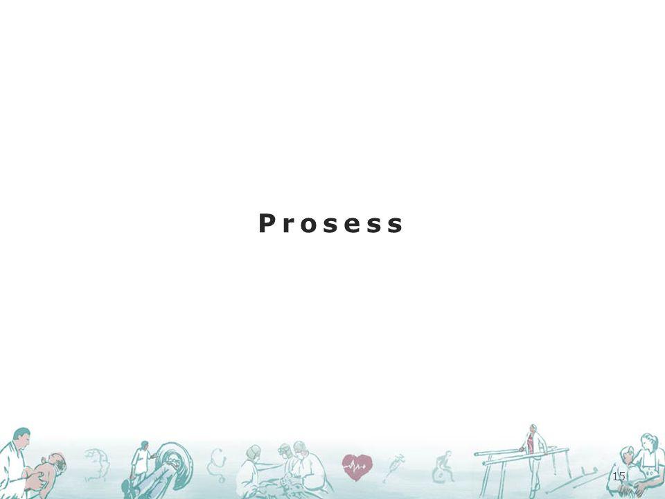 Prosess 15