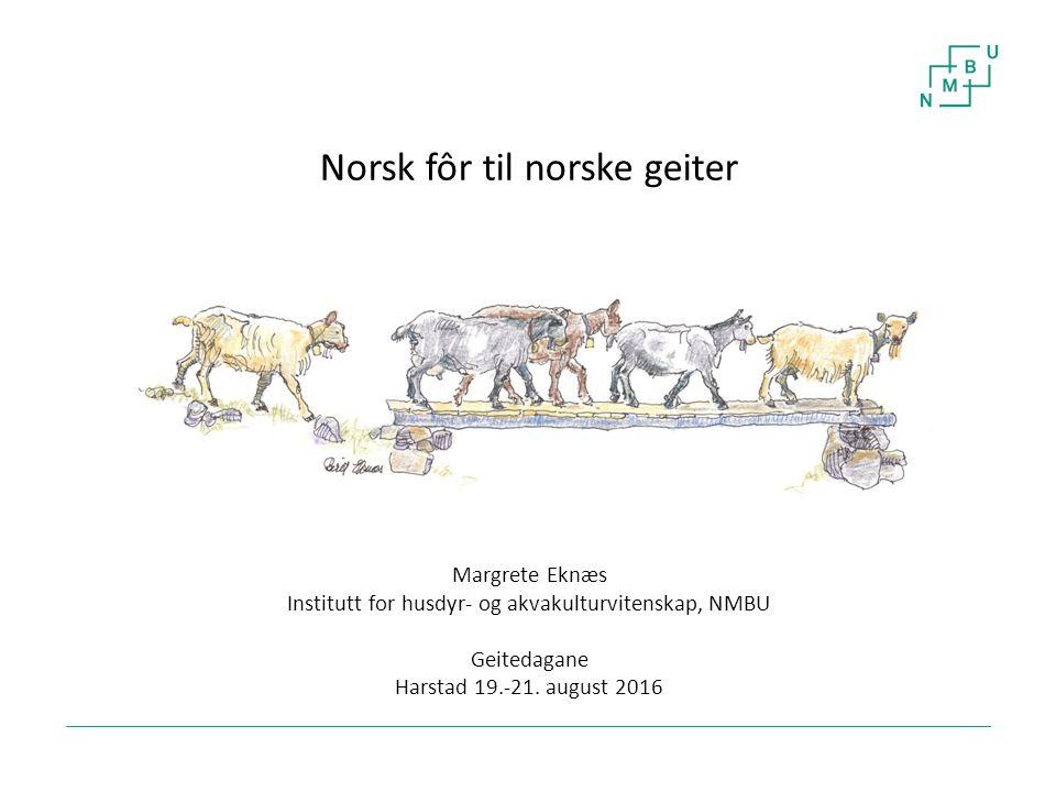 1 Norsk fôr til norske geiter Margrete Eknæs Institutt for husdyr- og akvakulturvitenskap, NMBU Geitedagane Harstad 19.-21. august 2016