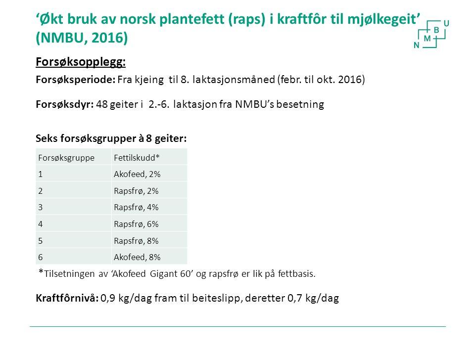 'Økt bruk av norsk plantefett (raps) i kraftfôr til mjølkegeit' (NMBU, 2016) Forsøksopplegg: Forsøksperiode: Fra kjeing til 8. laktasjonsmåned (febr.
