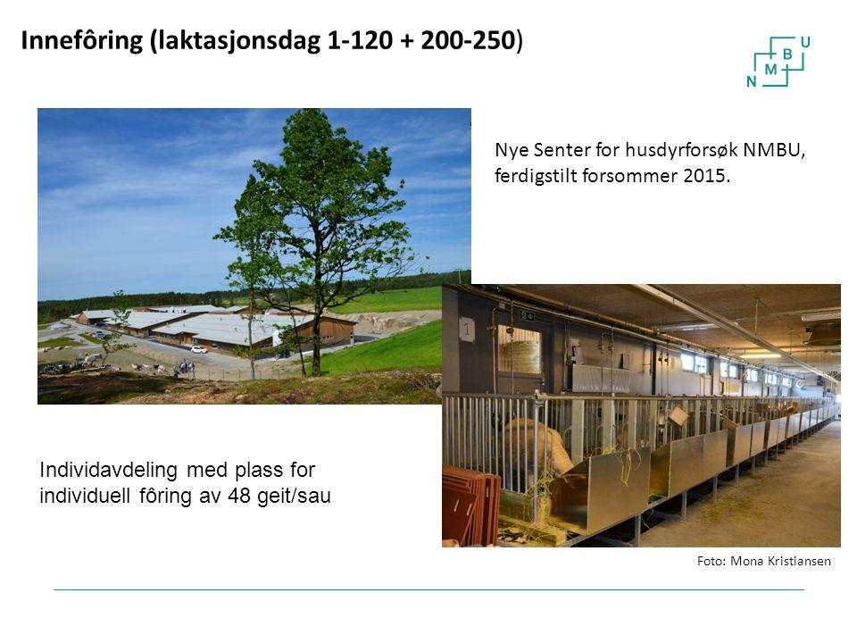 22 Innefôring (laktasjonsdag 1-120 + 200-250) Nye Senter for husdyrforsøk NMBU, ferdigstilt forsommer 2015. Individavdeling med plass for individuell