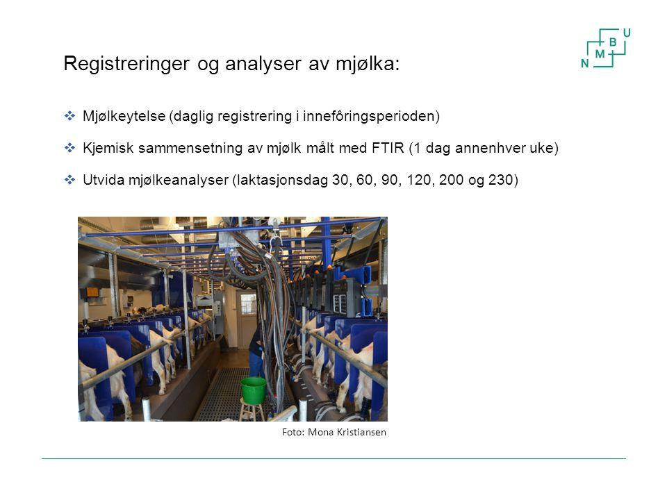 24 Registreringer og analyser av mjølka:  Mjølkeytelse (daglig registrering i innefôringsperioden)  Kjemisk sammensetning av mjølk målt med FTIR (1
