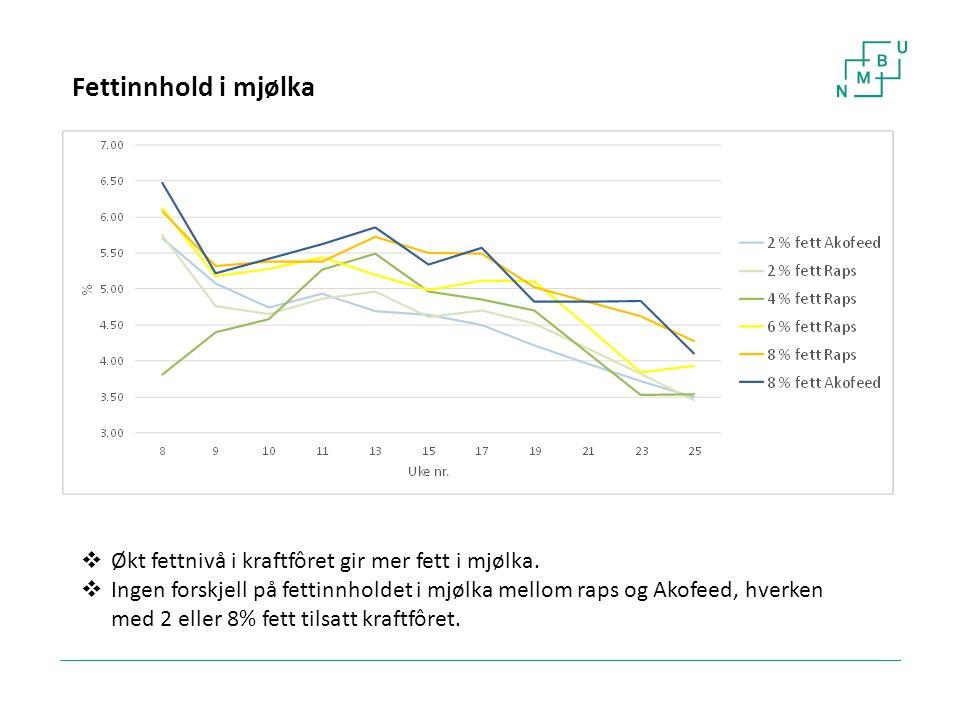 27 Fettinnhold i mjølka  Økt fettnivå i kraftfôret gir mer fett i mjølka.  Ingen forskjell på fettinnholdet i mjølka mellom raps og Akofeed, hverken
