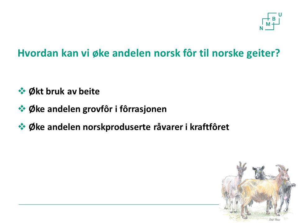 6 Hvordan kan vi øke andelen norsk fôr til norske geiter?  Økt bruk av beite  Øke andelen grovfôr i fôrrasjonen  Øke andelen norskproduserte råvare