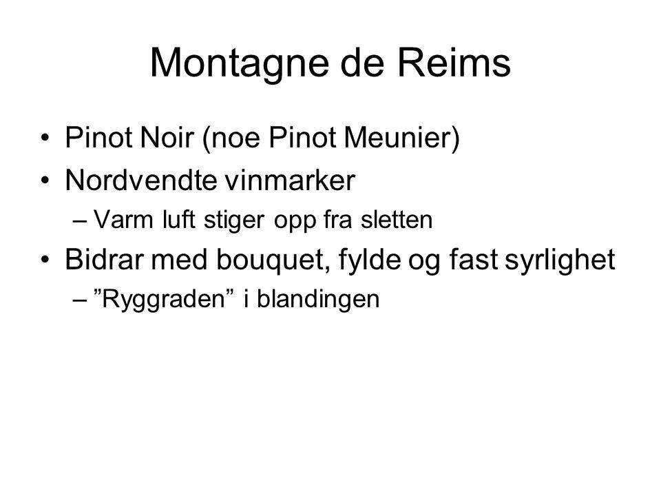 Montagne de Reims Pinot Noir (noe Pinot Meunier) Nordvendte vinmarker –Varm luft stiger opp fra sletten Bidrar med bouquet, fylde og fast syrlighet – Ryggraden i blandingen