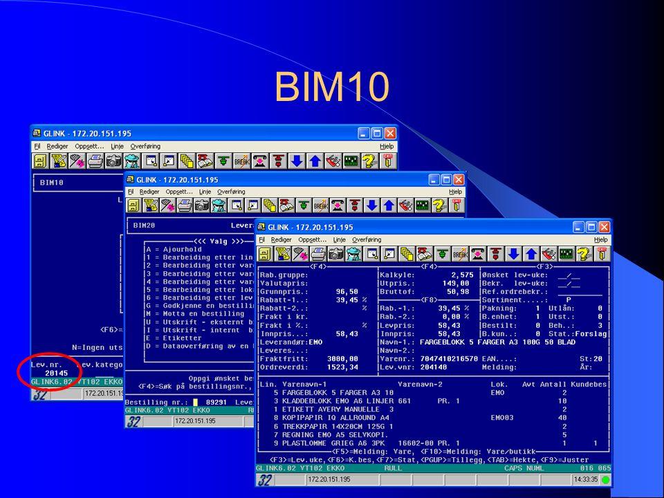 BIM10
