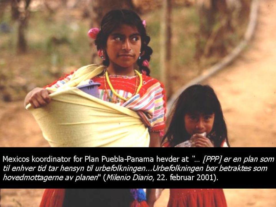Vi, urbefolkningen og bøndene som er avhengig av jorden for å leve og produsere, utgjør 43.5% av befolkningen der Plan Puebla-Panama skal implementeres Vår region har de høyeste tallene for marginalisering i Mexico Vårt krav: Fullstendig integrering i de regionale og nasjonale politiske planene, og at det blir tatt hensyn til vår jordbrukskultur og våre indianske røtter Vårt problem: Plan Puebla-Panama søker ikke å sikre overlevelsesmuligheter, eller kulturelle verdier for den indianske bondebefolkningen