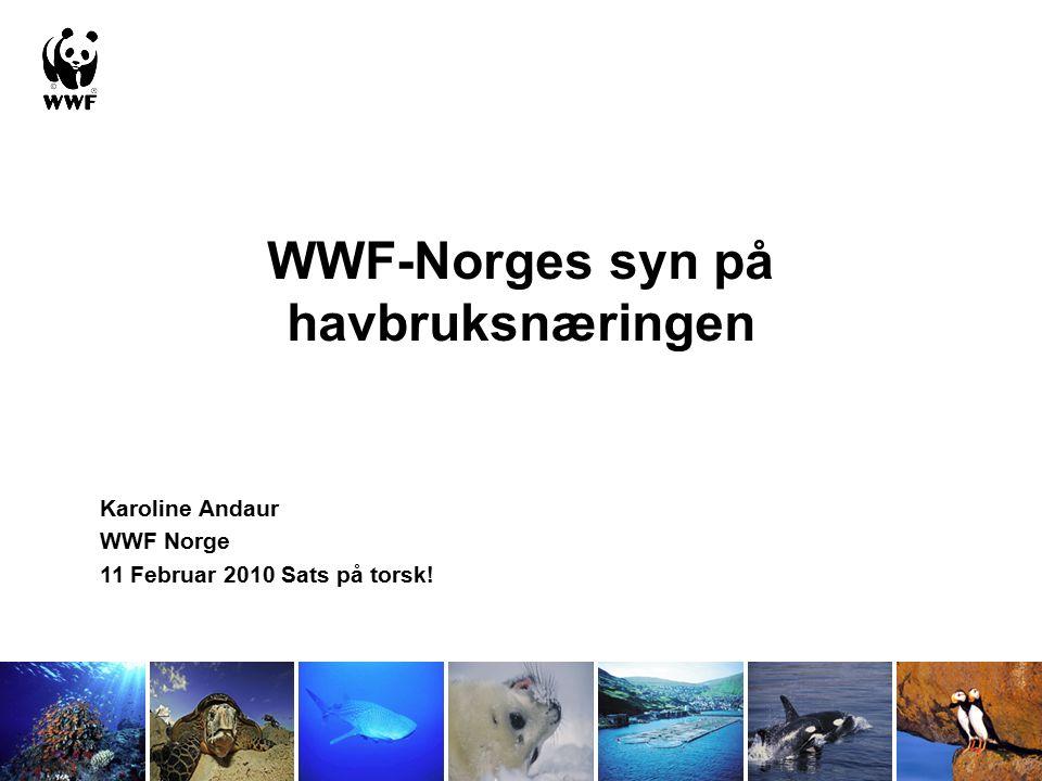 WWF (World Wide Fund for Nature) Global organisasjon med 5 millioner medlemmer, i Norge siden 1971, nå ca 12 000 medlemmer.
