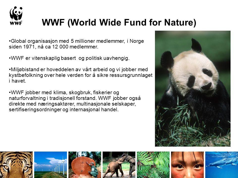WWF er ingen motstander av fiskeoppdrett Beste forvaltningspraksis Beskytte verdifulle og sårbare områder og arter Begrense næringens økologiske fotavtrykk