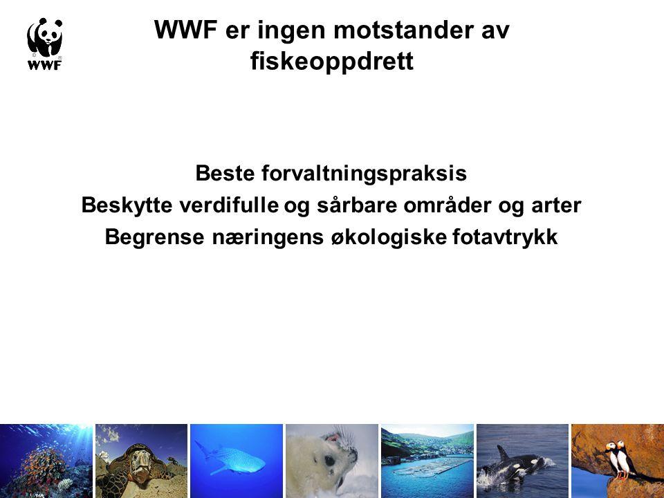 Hva er WWF sin jobb.
