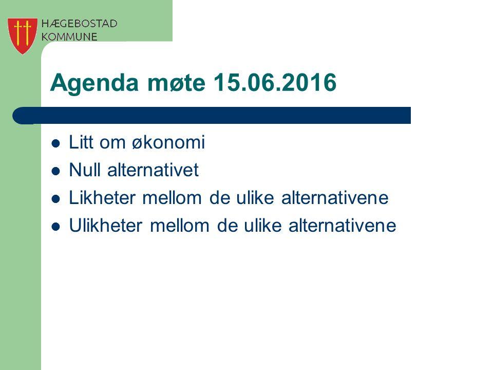 Agenda møte 15.06.2016 Litt om økonomi Null alternativet Likheter mellom de ulike alternativene Ulikheter mellom de ulike alternativene