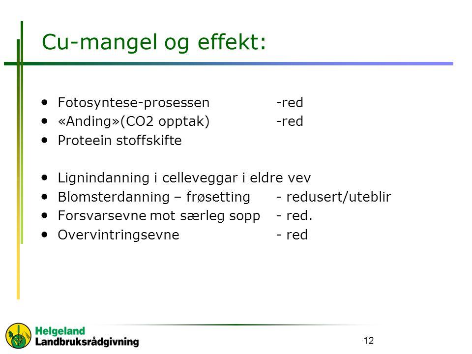 Cu-mangel og effekt: Fotosyntese-prosessen -red «Anding»(CO2 opptak) -red Proteein stoffskifte Lignindanning i celleveggar i eldre vev Blomsterdanning – frøsetting- redusert/uteblir Forsvarsevne mot særleg sopp- red.