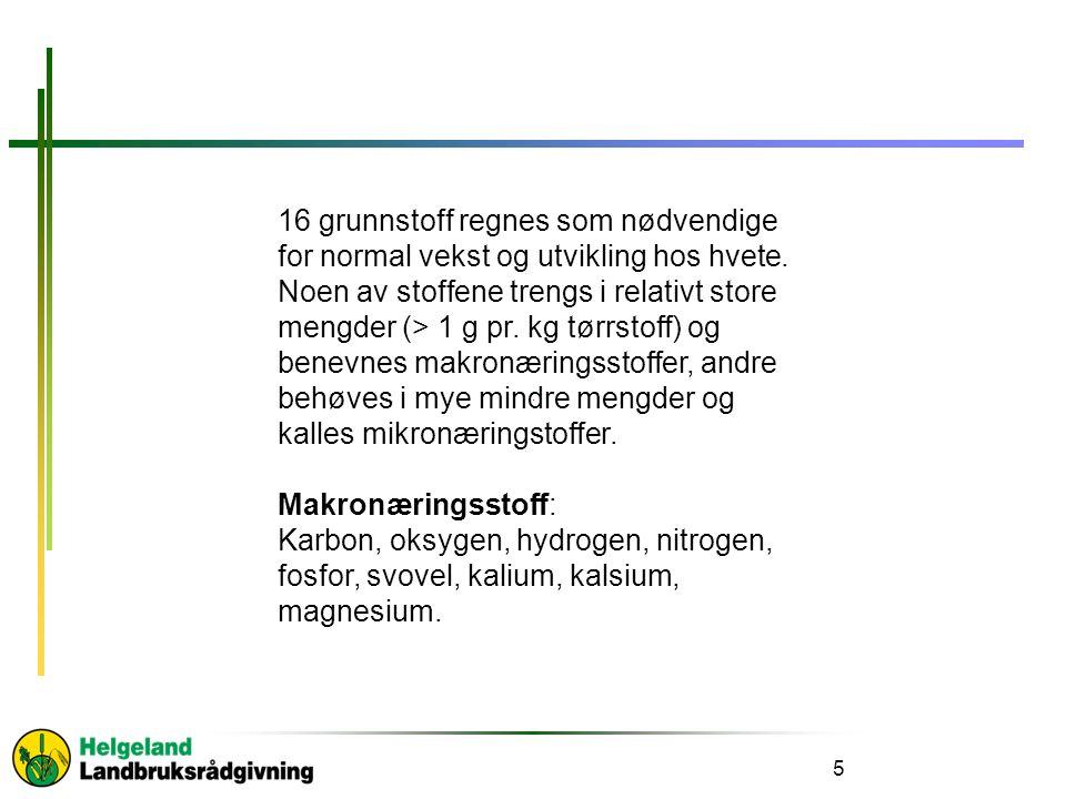 5 16 grunnstoff regnes som nødvendige for normal vekst og utvikling hos hvete.