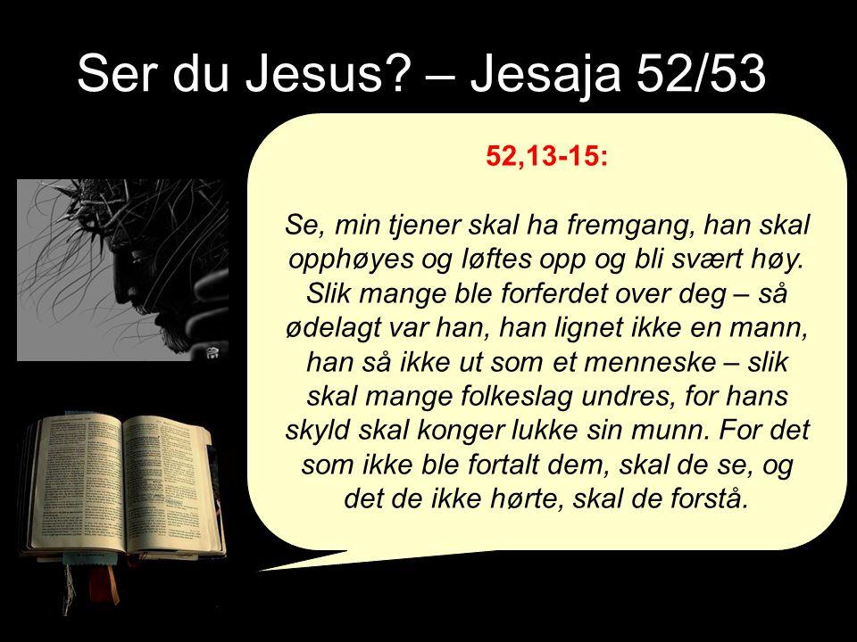 Ser du Jesus.