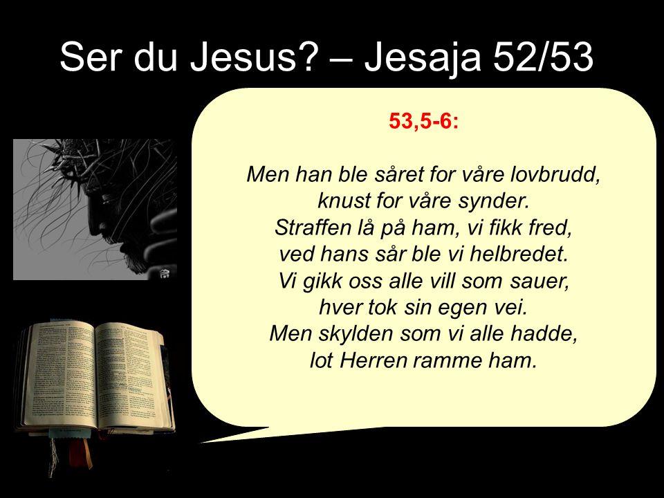 Ser du Jesus. – Jesaja 52/53 53,5-6: Men han ble såret for våre lovbrudd, knust for våre synder.