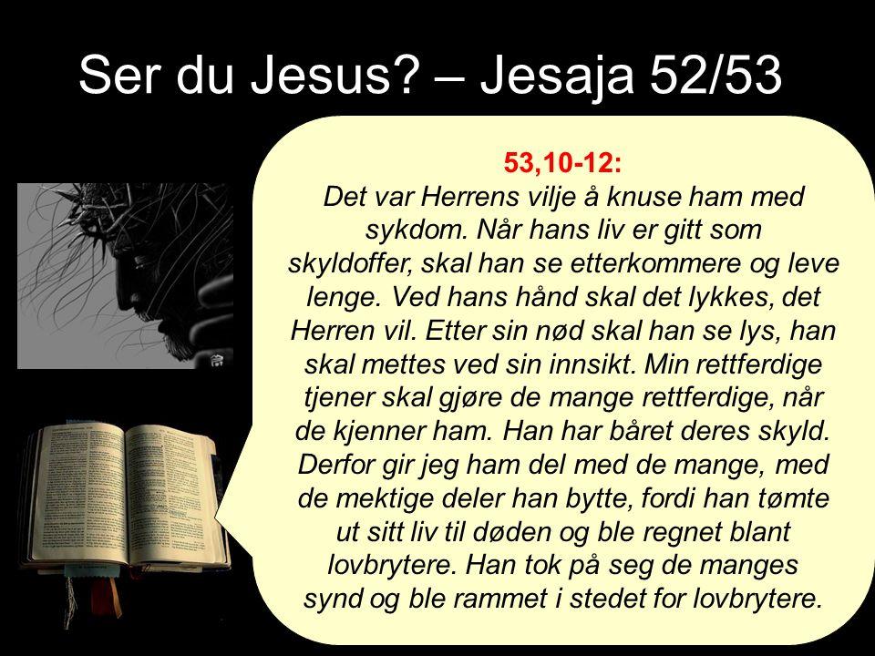 Ser du Jesus. – Jesaja 52/53 53,10-12: Det var Herrens vilje å knuse ham med sykdom.