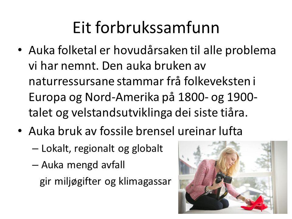 Eit forbrukssamfunn Auka folketal er hovudårsaken til alle problema vi har nemnt.