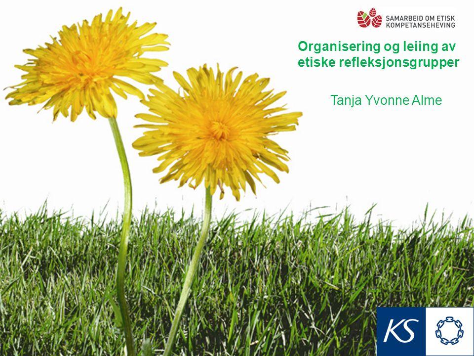 Organisering og leiing av etiske refleksjonsgrupper Tanja Yvonne Alme