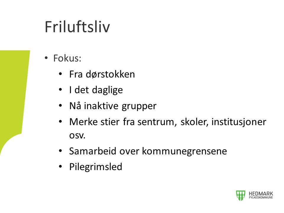 Plan for fysisk aktivitet i Hedmark Høring til 29.november 2013