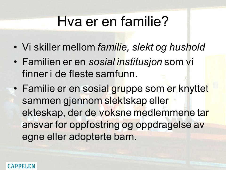 Hva er en familie.