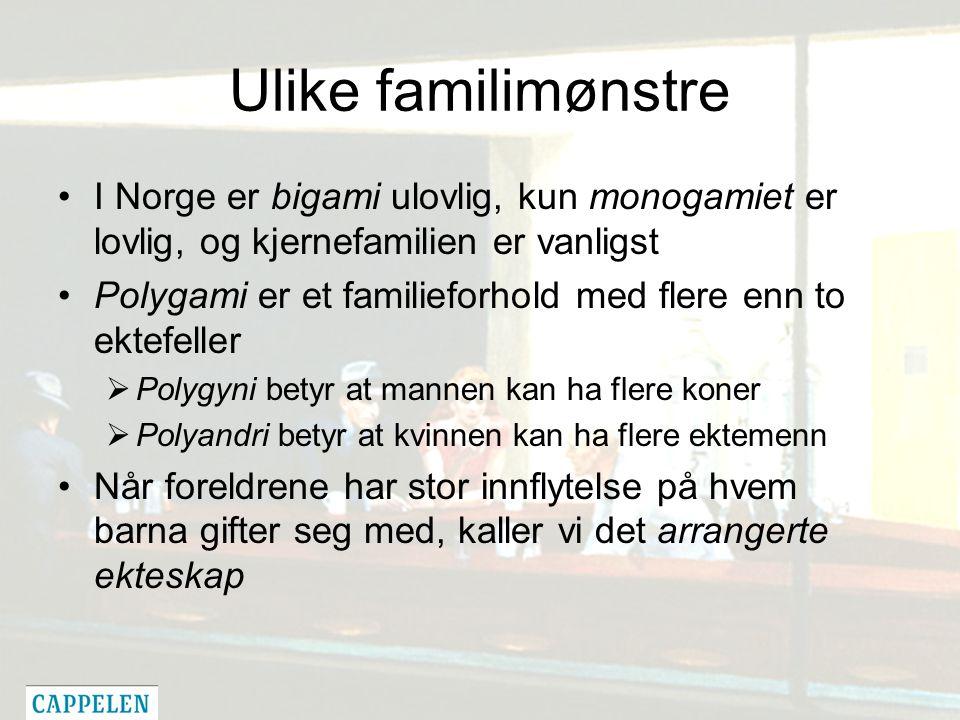 Ulike familimønstre I Norge er bigami ulovlig, kun monogamiet er lovlig, og kjernefamilien er vanligst Polygami er et familieforhold med flere enn to ektefeller  Polygyni betyr at mannen kan ha flere koner  Polyandri betyr at kvinnen kan ha flere ektemenn Når foreldrene har stor innflytelse på hvem barna gifter seg med, kaller vi det arrangerte ekteskap
