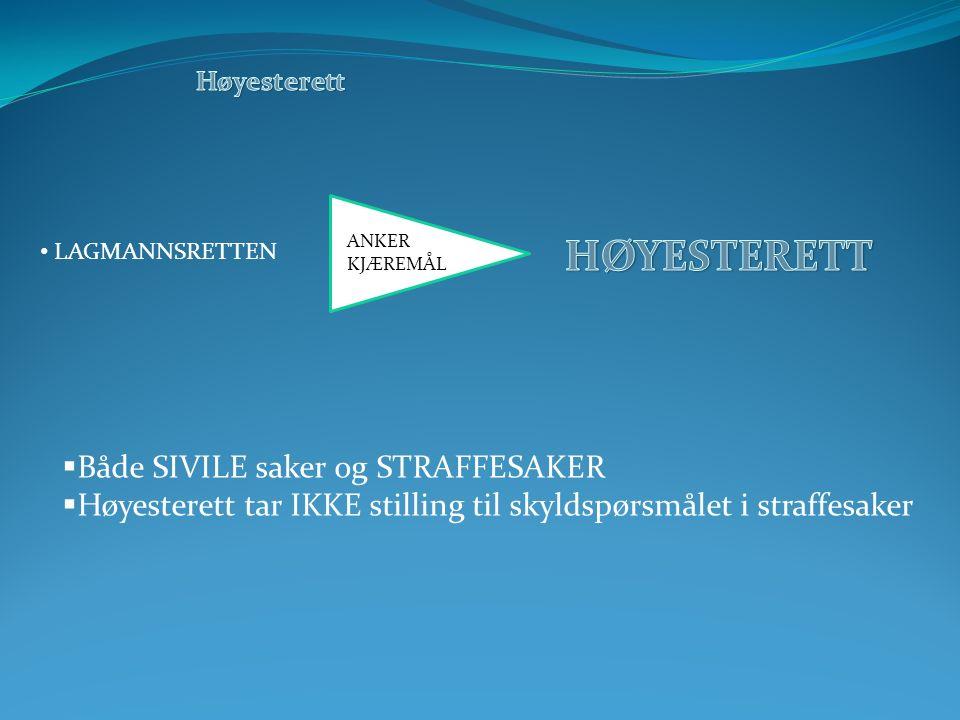  Både SIVILE saker og STRAFFESAKER  Høyesterett tar IKKE stilling til skyldspørsmålet i straffesaker LAGMANNSRETTEN ANKER KJÆREMÅL