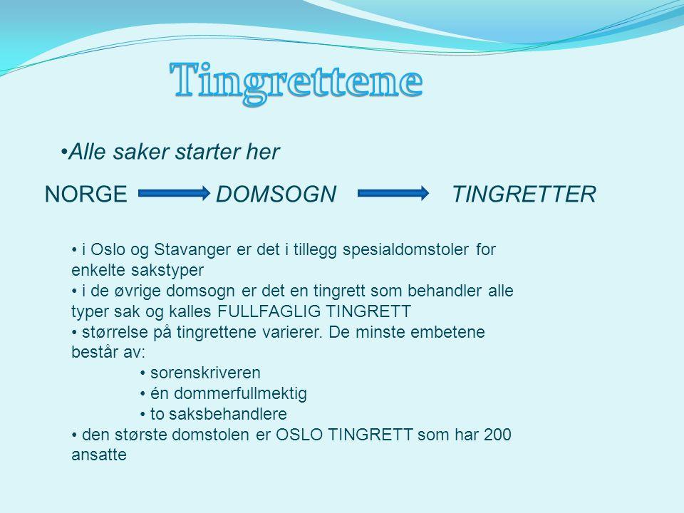 Alle saker starter her NORGEDOMSOGNTINGRETTER i Oslo og Stavanger er det i tillegg spesialdomstoler for enkelte sakstyper i de øvrige domsogn er det en tingrett som behandler alle typer sak og kalles FULLFAGLIG TINGRETT størrelse på tingrettene varierer.