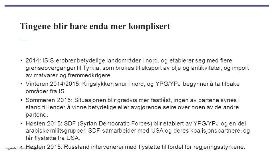 Høgskolen i Sørøst-Norge Tingene blir bare enda mer komplisert 2014: ISIS erobrer betydelige landområder i nord, og etablerer seg med flere grenseover