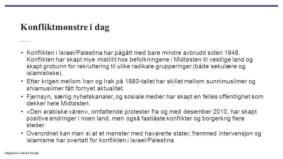 Høgskolen i Sørøst-Norge Konfliktmønstre i dag Konflikten i Israel/Palestina har pågått med bare mindre avbrudd siden 1948. Konflikten har skapt mye m