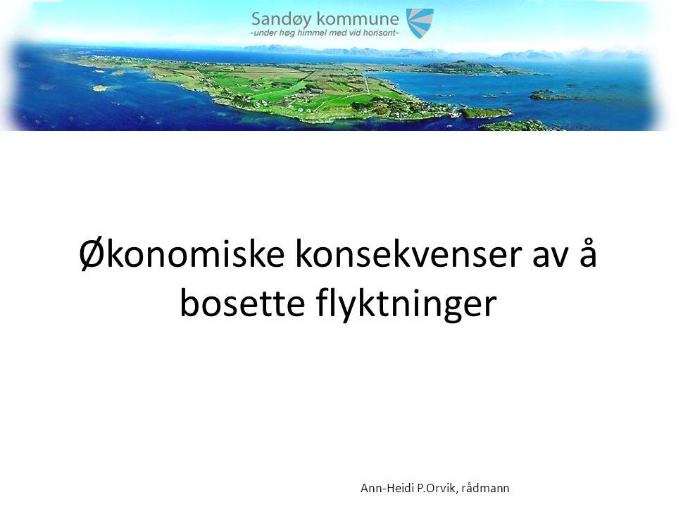 Økonomiske konsekvenser av å bosette flyktninger Ann-Heidi P.Orvik, rådmann