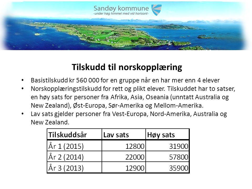 Tilskudd til norskopplæring Basistilskudd kr 560 000 for en gruppe når en har mer enn 4 elever Norskopplæringstilskudd for rett og plikt elever.
