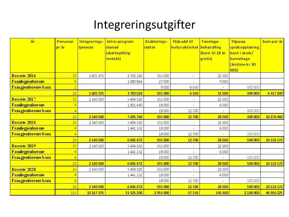 Bemanning og kapasitet i integreringstjeneste