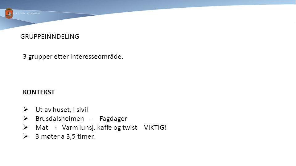GRUPPEINNDELING 3 grupper etter interesseområde. KONTEKST  Ut av huset, i sivil  Brusdalsheimen - Fagdager  Mat - Varm lunsj, kaffe og twist VIKTIG