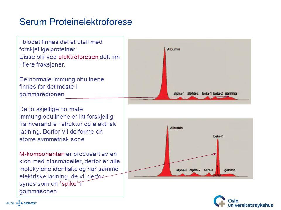 Serum Proteinelektroforese I blodet finnes det et utall med forskjellige proteiner Disse blir ved elektroforesen delt inn i flere fraksjoner.
