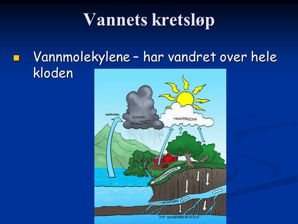 Vannets kretsløp Vannmolekylene – har vandret over hele kloden Vannmolekylene – har vandret over hele kloden