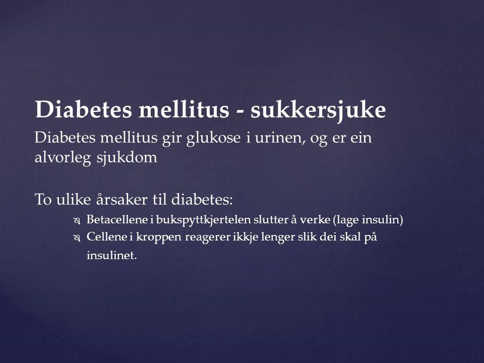 Diabetes mellitus - sukkersjuke Diabetes mellitus gir glukose i urinen, og er ein alvorleg sjukdom To ulike årsaker til diabetes:   Betacellene i bukspyttkjertelen slutter å verke (lage insulin)   Cellene i kroppen reagerer ikkje lenger slik dei skal på insulinet.