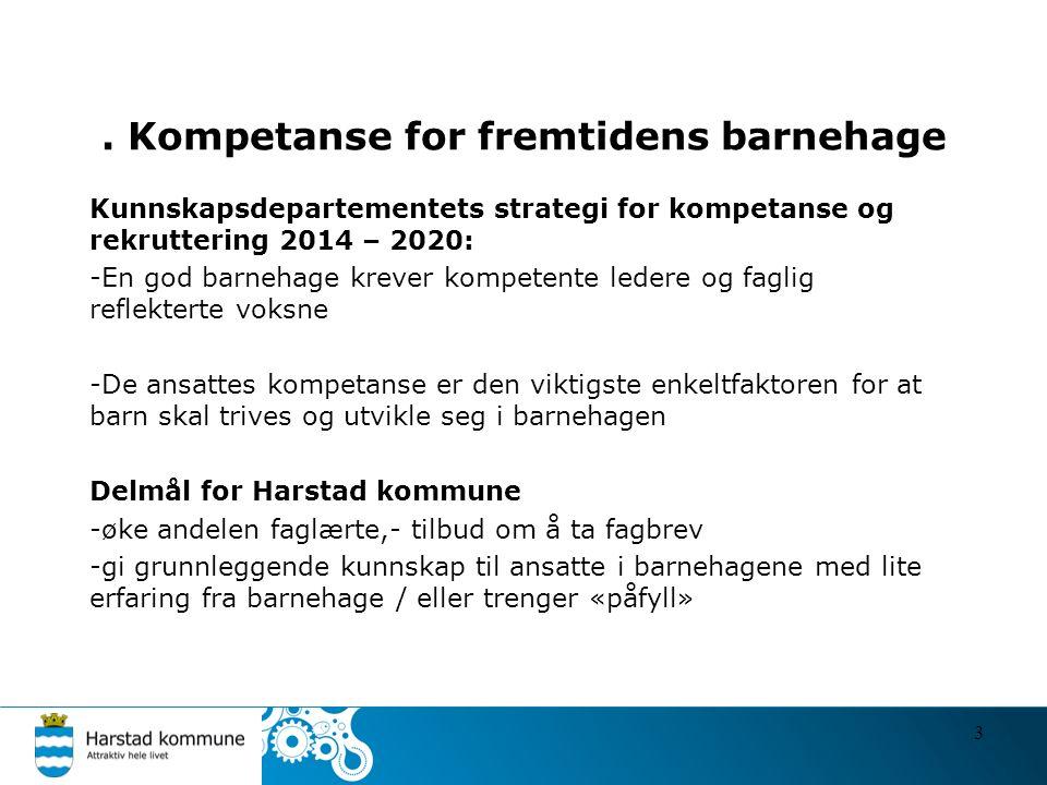 . Kompetanse for fremtidens barnehage Kunnskapsdepartementets strategi for kompetanse og rekruttering 2014 – 2020: -En god barnehage krever kompetente