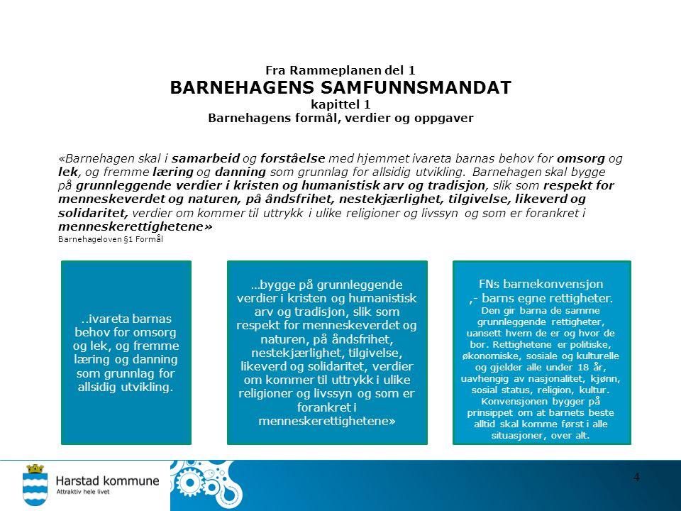 Fra Rammeplanen del 1 BARNEHAGENS SAMFUNNSMANDAT kapittel 1 Barnehagens formål, verdier og oppgaver «Barnehagen skal i samarbeid og forståelse med hje