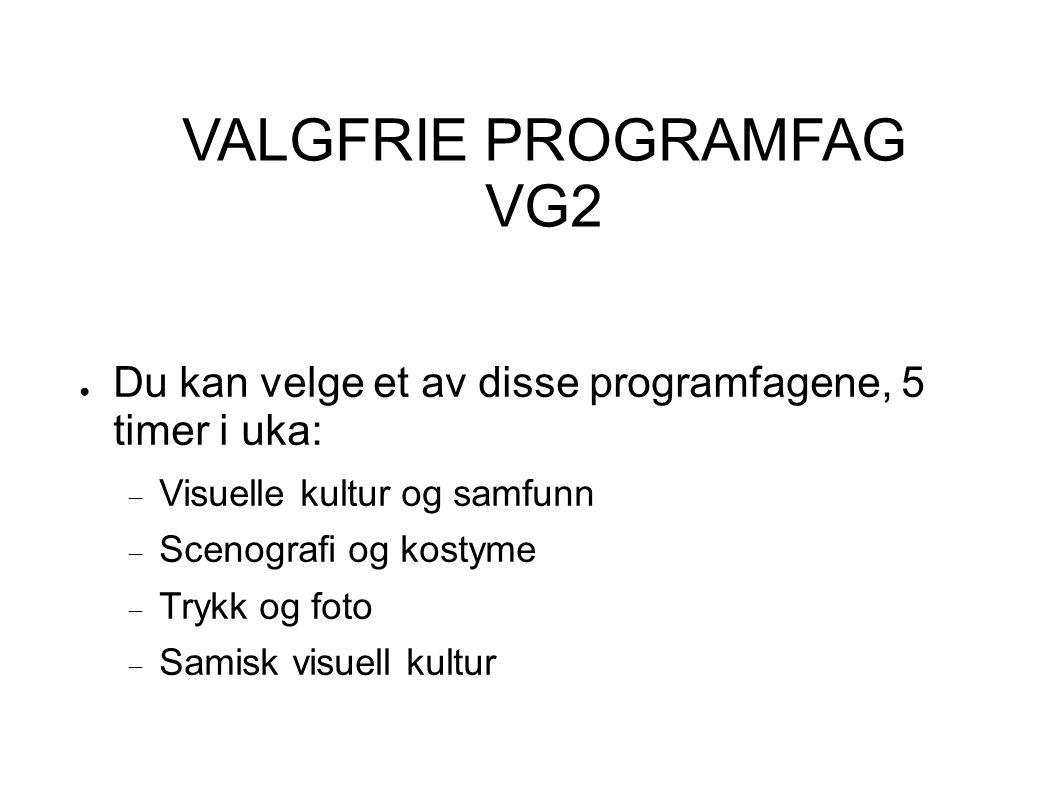 VALGFRIE PROGRAMFAG VG2 ● Du kan velge et av disse programfagene, 5 timer i uka:  Visuelle kultur og samfunn  Scenografi og kostyme  Trykk og foto  Samisk visuell kultur