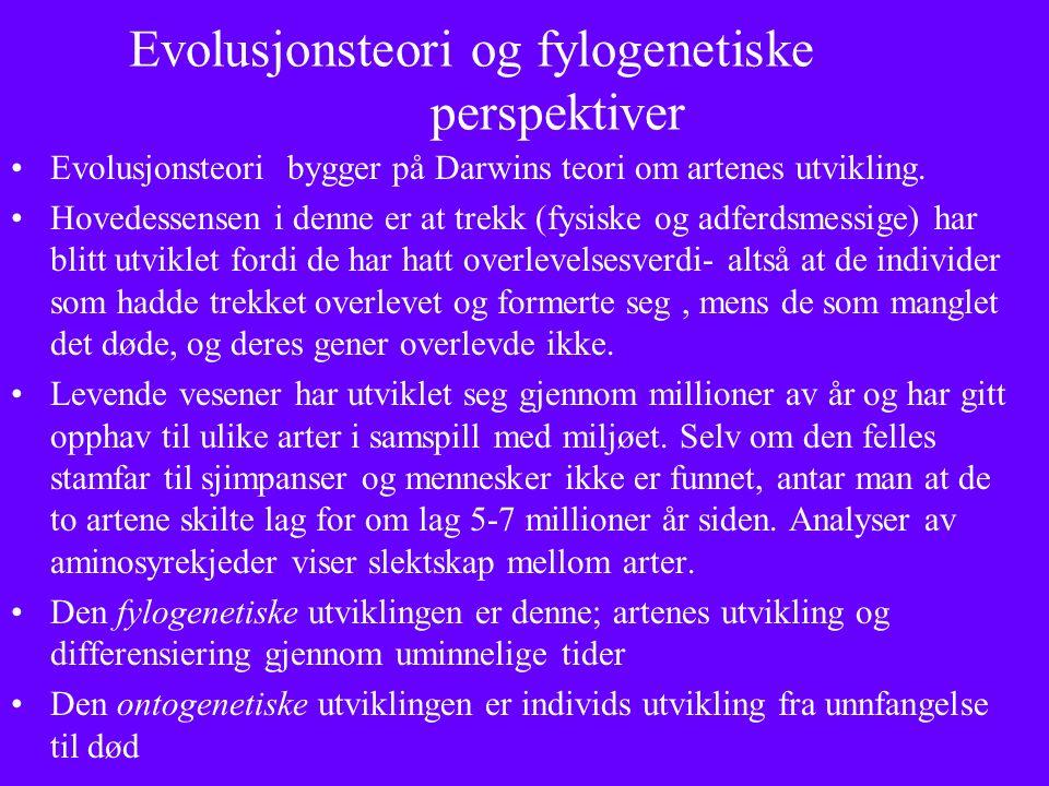 Evolusjonsteori og fylogenetiske perspektiver Evolusjonsteori bygger på Darwins teori om artenes utvikling.