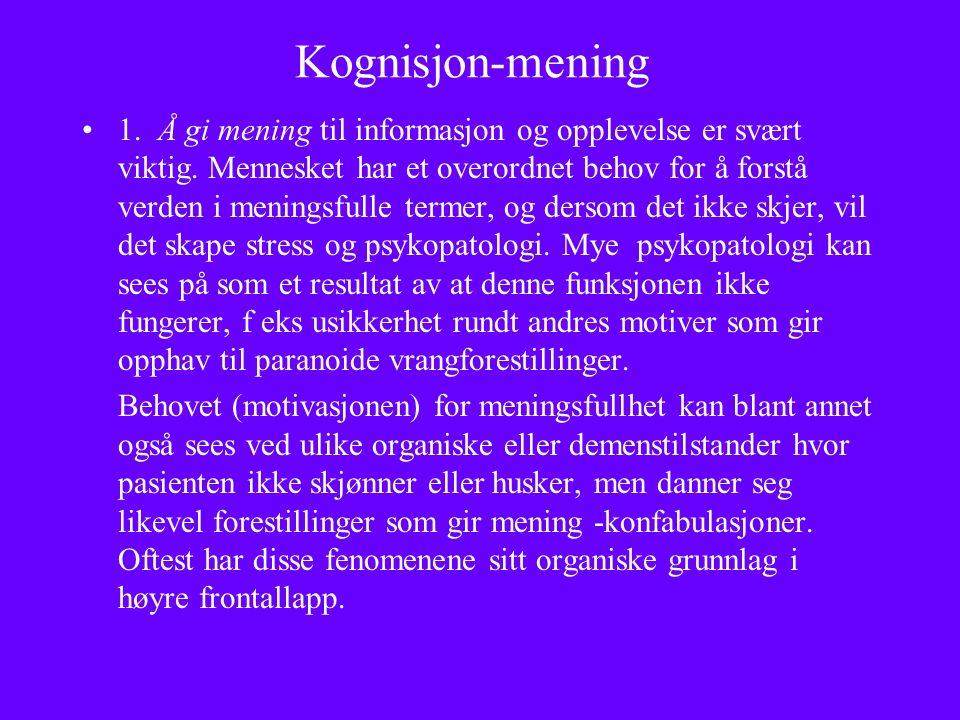 Kognisjon-mening 1. Å gi mening til informasjon og opplevelse er svært viktig.
