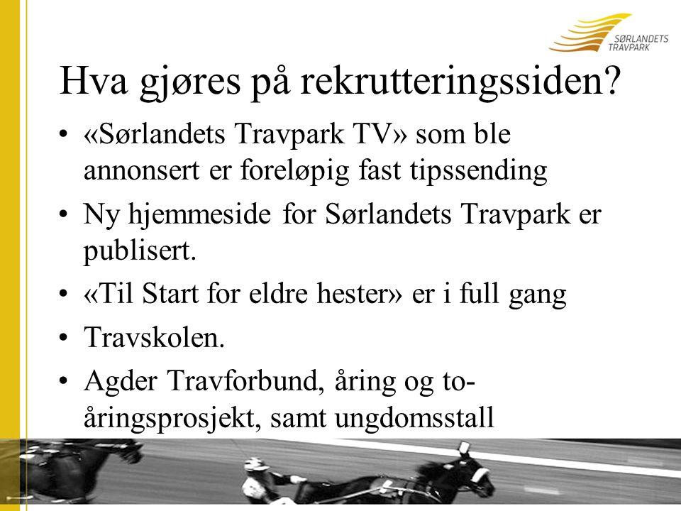 Hva gjøres på rekrutteringssiden? «Sørlandets Travpark TV» som ble annonsert er foreløpig fast tipssending Ny hjemmeside for Sørlandets Travpark er pu