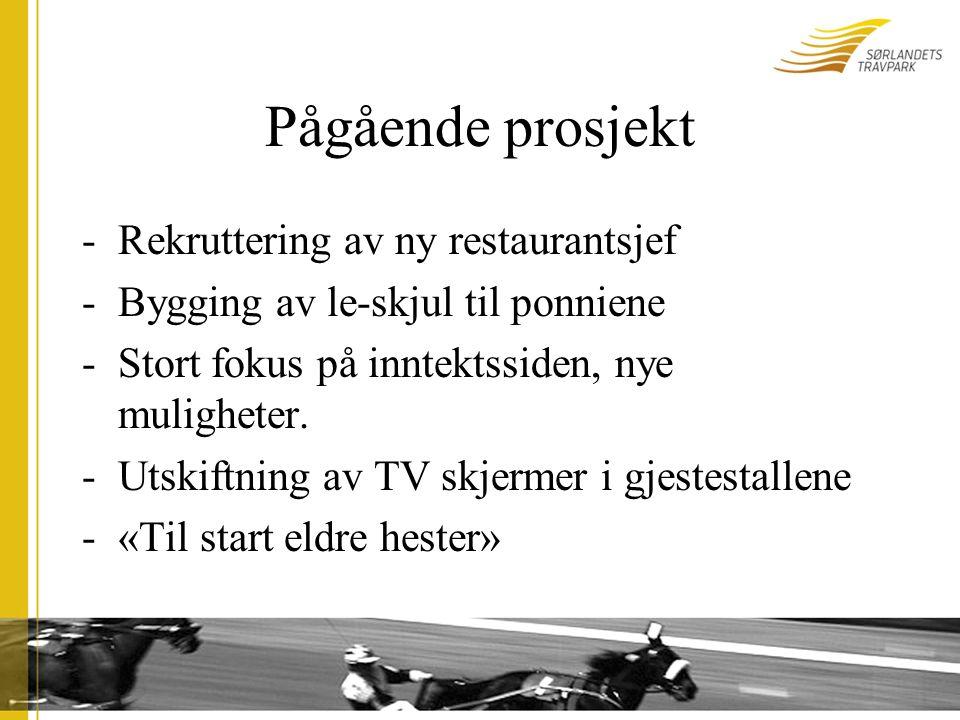 Pågående prosjekt -Rekruttering av ny restaurantsjef -Bygging av le-skjul til ponniene -Stort fokus på inntektssiden, nye muligheter.