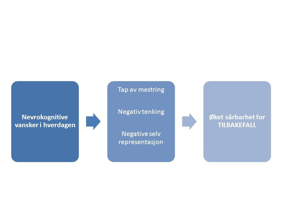 Nevrokognitive vansker i hverdagen Tap av mestring Negativ tenking Negative selv representasjon Øket sårbarhet for TILBAKEFALL