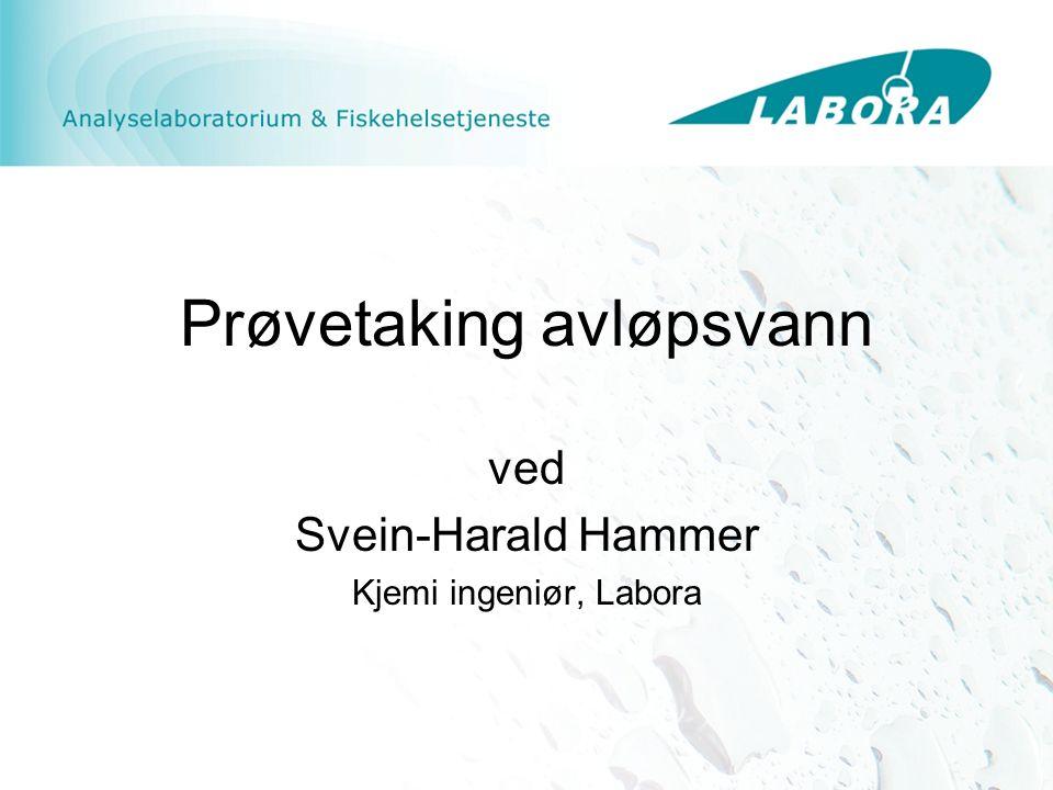 Prøvetaking avløpsvann ved Svein-Harald Hammer Kjemi ingeniør, Labora